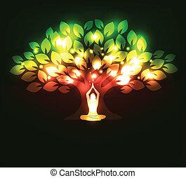 árvore, e, ioga
