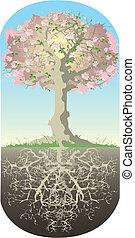 árvore, e, seu, raizes