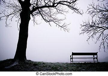 árvore, em, nevoeiro