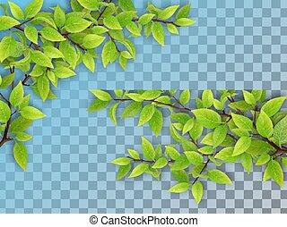 árvore, folhas, jogo, ramos, verde