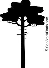 árvore, fretwork