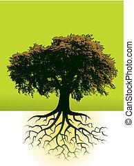 árvore, fundo