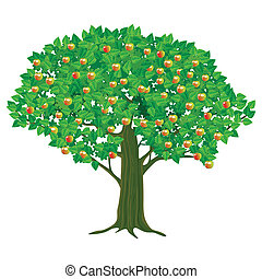 árvore grande, maçã