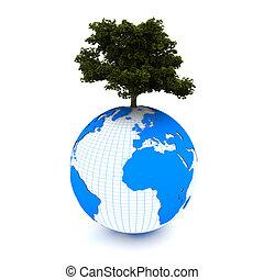 árvore, grows, chão