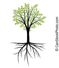 árvore, ilustração