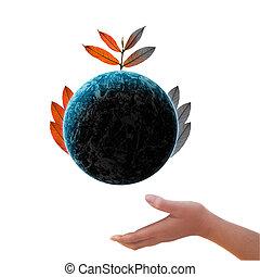 árvore, ligado, terra, de, ambiental