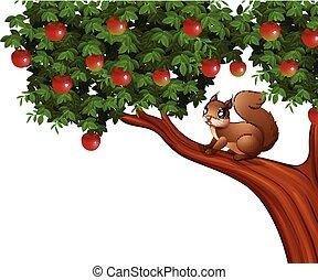 árvore, maçã, esquilo, caricatura