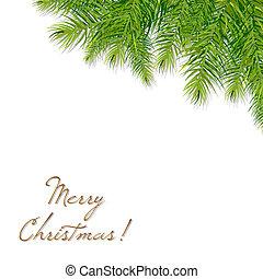 árvore, natal, ramo