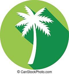 árvore palma, apartamento, ícone