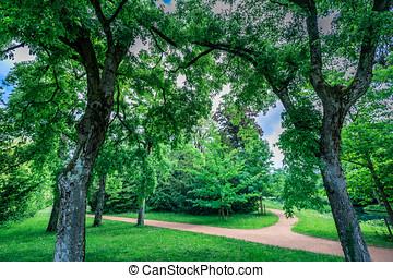 árvore, parque, espantoso, verde, bally, schoenenwerd