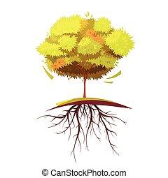 árvore, retro, ilustração, caricatura, raiz