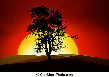 árvore, romanticos