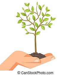árvore., segurando, mídia, imagem, ilustração, mão, flayers,...
