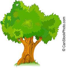 árvore, seu, antigas, grande, desenho