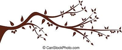 árvore, silueta, seu, ramo