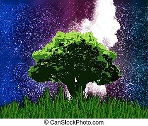 árvore, sta, fundo, um