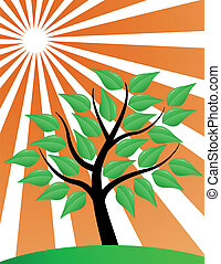árvore, stylized, com, vermelho, sunburst