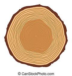 árvore toca, isolado, desenho, fundo, tronco, branca
