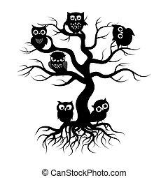 árvore velha, corujas, árvore., pretas, silueta, raizes
