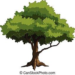árvore verde, por si, desenho