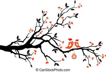 árvore, vetorial, pássaros, beijando