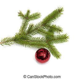 árvore xmas, bola, pendurar, um, árvore natal, ramo, isolado