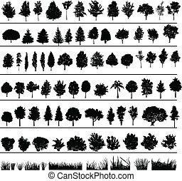 árvores, arbustos, capim