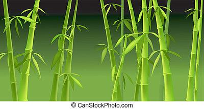 árvores bambu, desenho, chinês