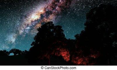árvores, e, meio leitoso, estrelas, em, night., elementos, de, este, imagem, fornecido, por, nasa