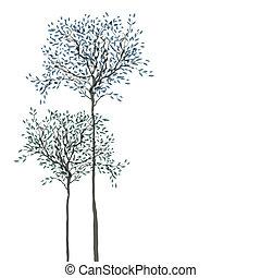 árvores, experiência., a, tronco, e, folhas, em, separado,...