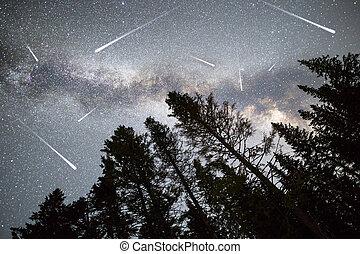 árvores pinho, silueta, meio leitoso, estrelas cadentes