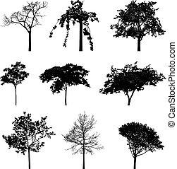 árvores, silhuetas
