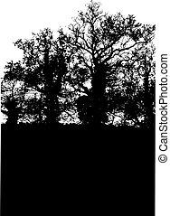 árvores, silueta