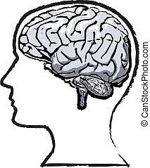 áspero, cerebro humano, mente, grunge, bosquejo