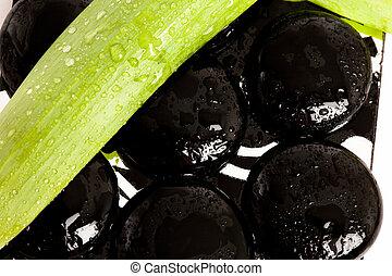 ásványvízforrás, alapvető, (stones, noha, leaves)