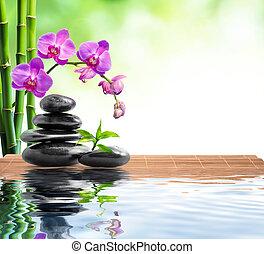 ásványvízforrás, bambusz, háttér, orhidea