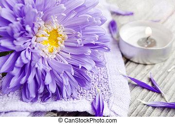 ásványvízforrás, virág