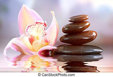 ásványvízforrás, zen, stones., összhang, fogalom