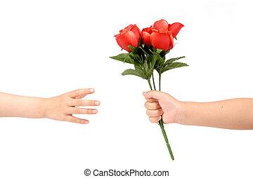 átadás, piros rózsa