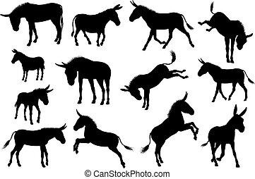 âne, animal, silhouettes, ensemble