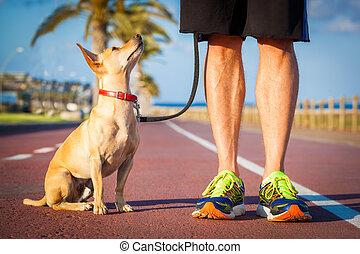 ägare, hund promenera