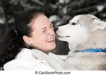 ägare, skalliknande, lycklig, hund, sibirisk