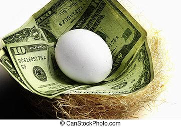 ägg, in, a, bygga bo, med, kontanter, symbolizing, avgång,...