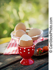 Ägg, kokt