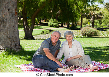 äldre koppla, ha picknick, in, den, ga