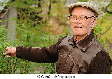 äldre, trädgård, arbete, man