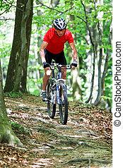 älter, fahren, in, der, wald, mit, mountain-bike