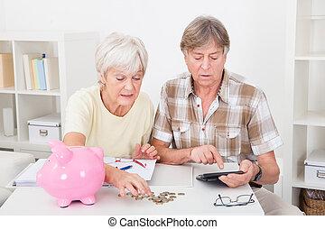 älter, geldmünzen, paar, berechnend