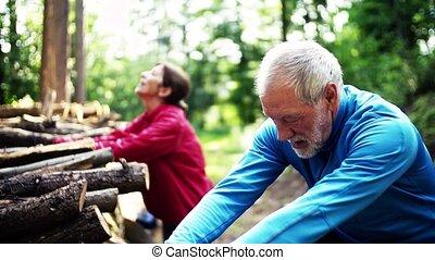älter, sportliche , paar, dehnen, in, der, wald, draußen,...