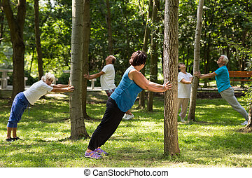 ältere, klappend, neben, bäume